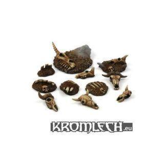 Animal Skulls & Bones (11)