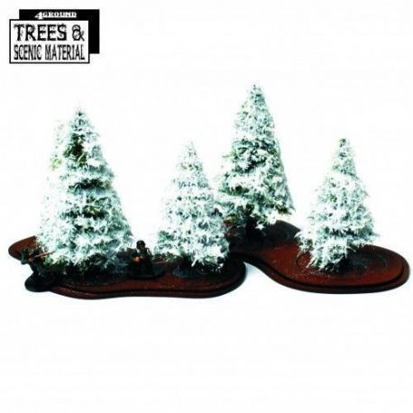 5 X Young Winter Fir Trees & Bases