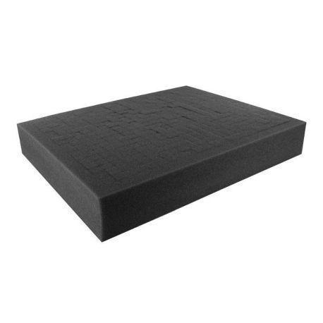 FS050R 50 mm (2,0 Inch) Figure Foam Tray full-size Raster