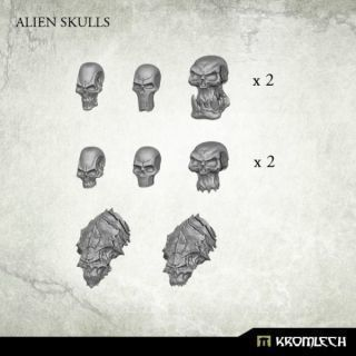 ALIEN SKULLS (14)