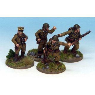 Polish Command