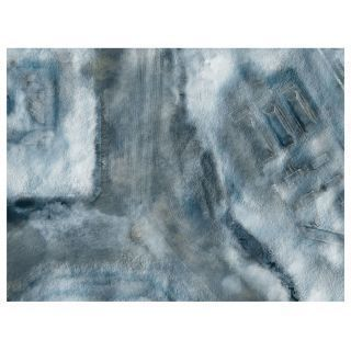 "KT Mat Imperial City Winter -4- 22""x30"""