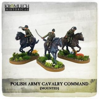POLISH ARMY CAVALRY COMMAND ON HORSES (3)