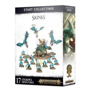 START COLLECTING. SKINKS