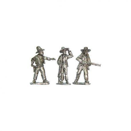 Cowboy Posse 1