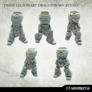 Dragonborn Prime Bodies (5)
