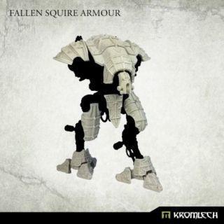 FALLEN SQUIRE ARMOUR (1)