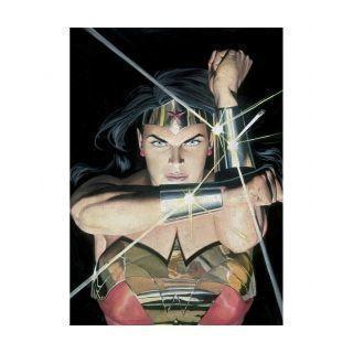 Displate - DC / Alex Ross 08 - Wonder Woman Trinidad