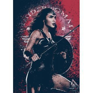 Wonder Woman metal poster designed by DC Comics