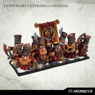 Hospodars Veterans Command (10)