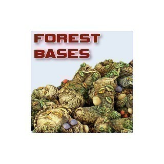 Forest Bases