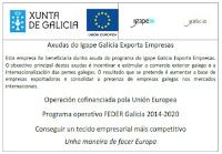 Axudas Igape Galicia